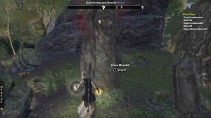 TESO Silent Village Dispelling Monoliths