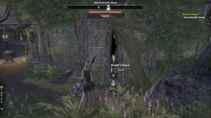 TESO quest The First Patient Find Way Inside Hendil's House
