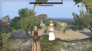 The Elder Scrolls Online Spirited Away Pary for Ancalins Children