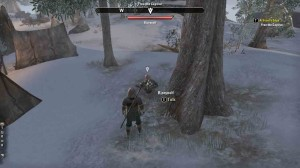 The Elder Scrolls Online At Frost Edge quest objective free captive