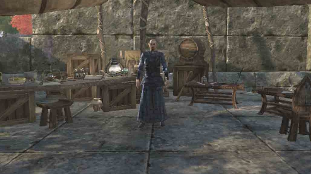 The Elder Scrolls Online Wearing the Veil quest talk to Ohmonir