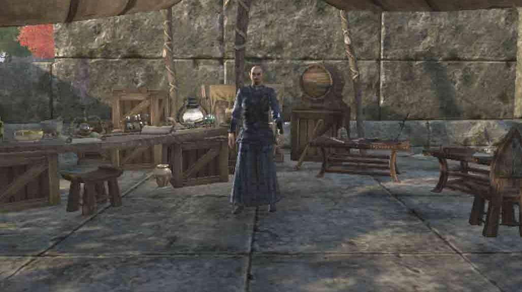 The Elder Scrolls Online Wearing the Veil quest talk to Ohmonir
